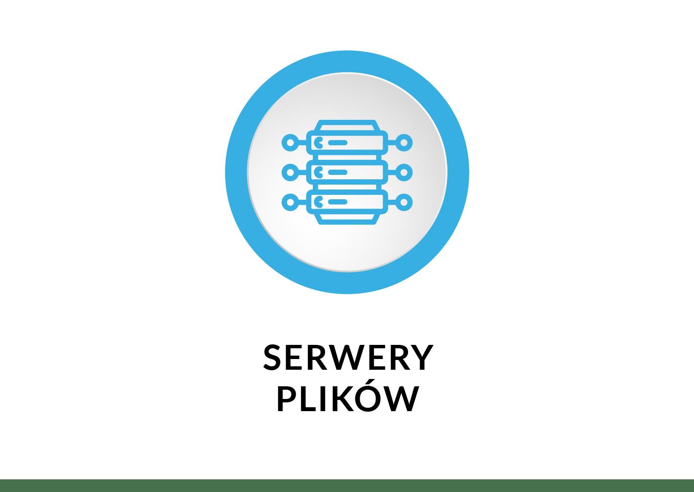 serwery-plikow (1)